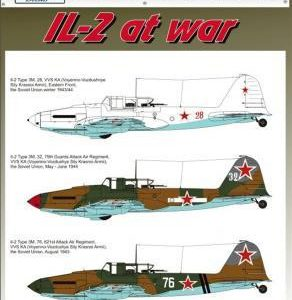 IL-2 Type 3 with NS37