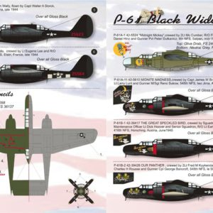 P-61 Black Widow Part 2