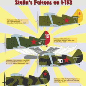 Stalin's Falcons on I-153 Part 6